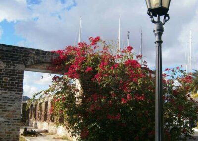 Dario Item Gallery Antigua Nelsons Dockyard (11)