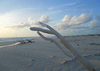 Dario Item Gallery Barbuda 11 Mile Beach (2)