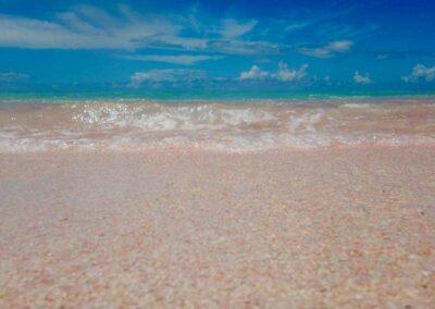Dario Item Gallery Barbuda Pink Sand Beach (10)
