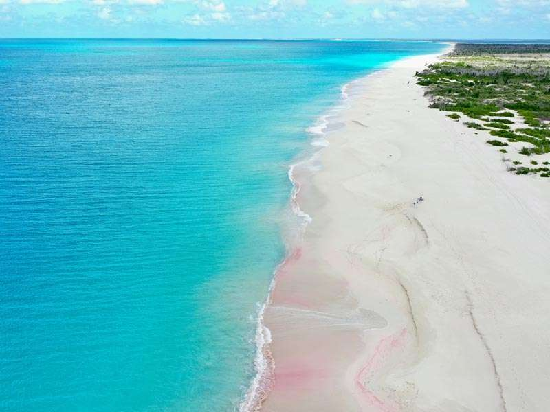 Dario Item Gallery Barbuda Pink Sand Beach (9)