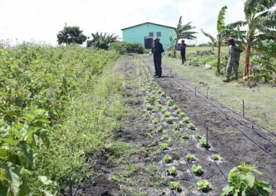 Dario Item News Antigua and Barbuda Defence Force contributing to National Food Security (3)